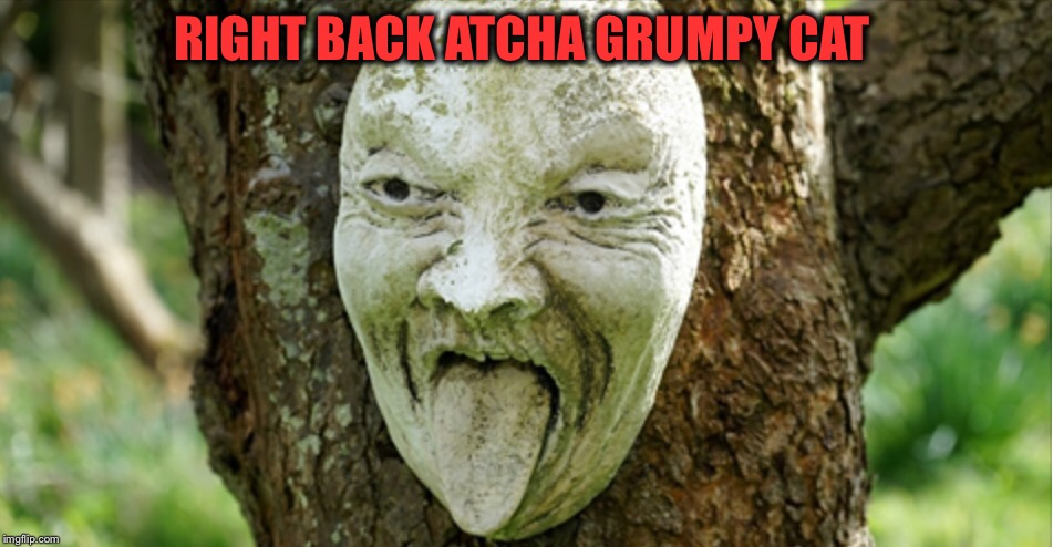 RIGHT BACK ATCHA GRUMPY CAT | made w/ Imgflip meme maker