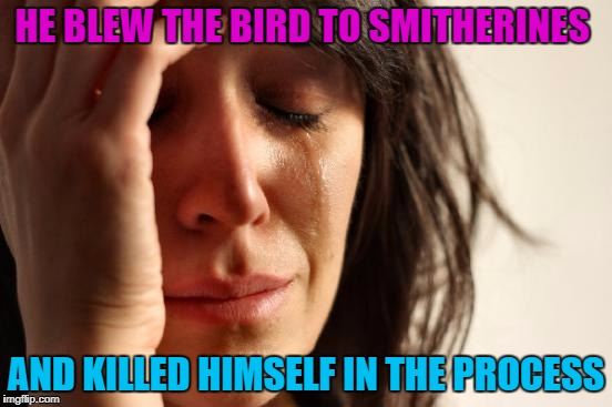First World Problems Meme | HE BLEW THE BIRD TO SMITHERINES AND KILLED HIMSELF IN THE PROCESS | image tagged in memes,first world problems | made w/ Imgflip meme maker