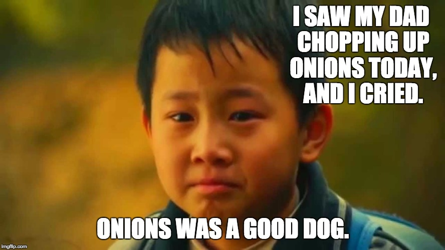 I SAW MY DAD CHOPPING UP ONIONS TODAY, AND I CRIED. ONIONS WAS A GOOD DOG. | image tagged in sad asian boy | made w/ Imgflip meme maker