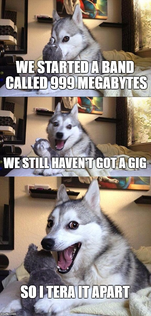 Bad Pun Dog Meme | WE STARTED A BAND CALLED 999 MEGABYTES WE STILL HAVEN'T GOT A GIG SO I TERA IT APART | image tagged in memes,bad pun dog | made w/ Imgflip meme maker