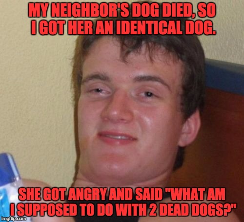 "10 Guy Meme | MY NEIGHBOR'S DOG DIED, SO I GOT HER AN IDENTICAL DOG. SHE GOT ANGRY AND SAID ""WHAT AM I SUPPOSED TO DO WITH 2 DEAD DOGS?"" 