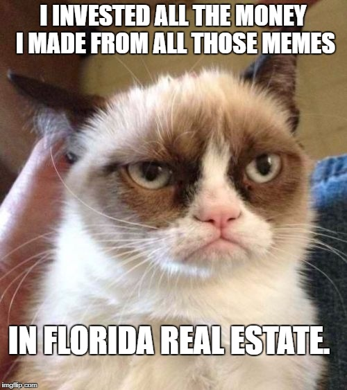 Grumpy Cat Reverse Meme | I INVESTED ALL THE MONEY I MADE FROM ALL THOSE MEMES IN FLORIDA REAL ESTATE. | image tagged in memes,grumpy cat reverse,grumpy cat | made w/ Imgflip meme maker