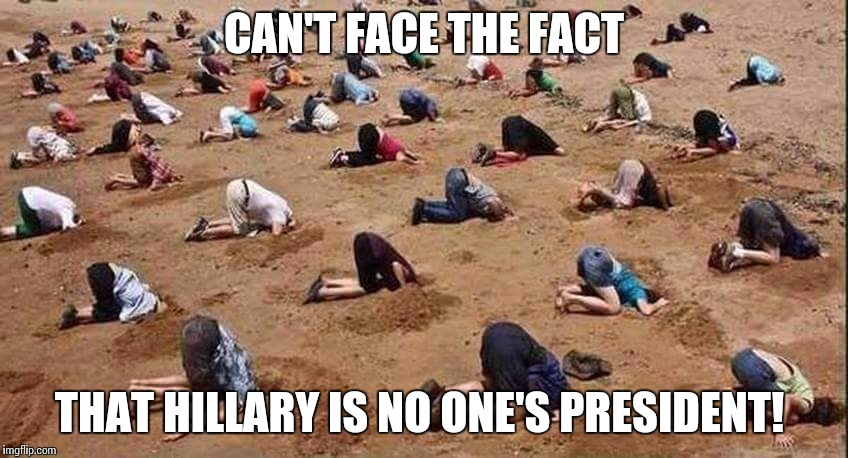 Hillary Clinton | CAN'T FACE THE FACT THAT HILLARY IS NO ONE'S PRESIDENT! | image tagged in hillary clinton | made w/ Imgflip meme maker