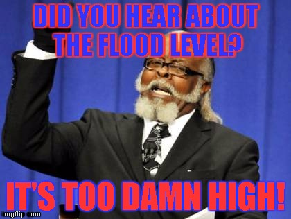 flood fails | DID YOU HEAR ABOUT THE FLOOD LEVEL? IT'S TOO DAMN HIGH! | image tagged in memes,too damn high,flood level,hurricane irma | made w/ Imgflip meme maker