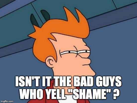 "Futurama Fry Meme | ISN'T IT THE BAD GUYS WHO YELL ""SHAME"" ? 
