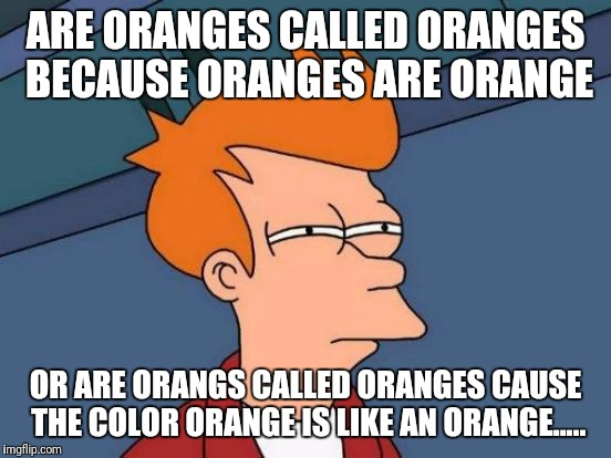 Futurama Fry Meme | ARE ORANGES CALLED ORANGES BECAUSE ORANGES ARE ORANGE OR ARE ORANGS CALLED ORANGES CAUSE THE COLOR ORANGE IS LIKE AN ORANGE..... | image tagged in memes,futurama fry | made w/ Imgflip meme maker