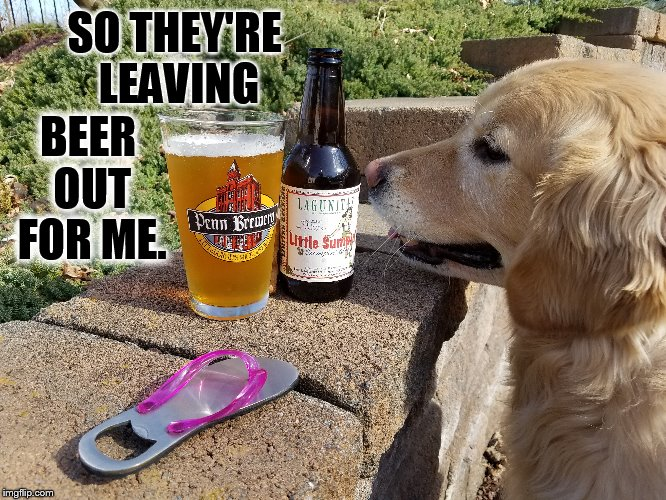 SO THEY'RE LEAVING BEER OUT FOR ME. | made w/ Imgflip meme maker