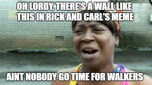 Aint Nobody Got Time For That Meme | OH LORDY, THERE'S A WALL LIKE THIS IN RICK AND CARL'S MEME AINT NOBODY GO TIME FOR WALKERS | image tagged in memes,aint nobody got time for that | made w/ Imgflip meme maker