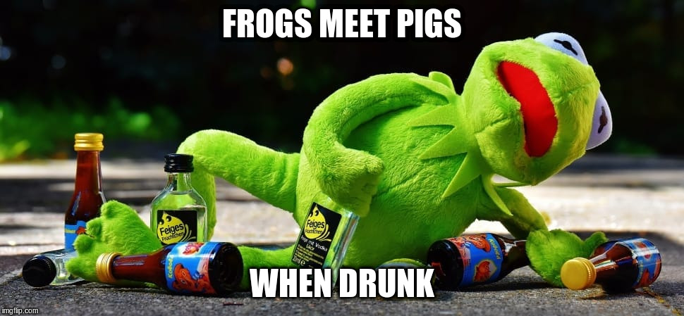FROGS MEET PIGS WHEN DRUNK | made w/ Imgflip meme maker