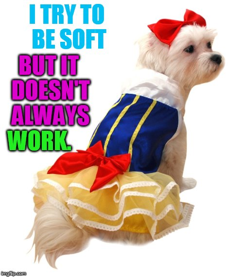 I TRY TO BE SOFT WORK. BUT IT DOESN'T ALWAYS | made w/ Imgflip meme maker