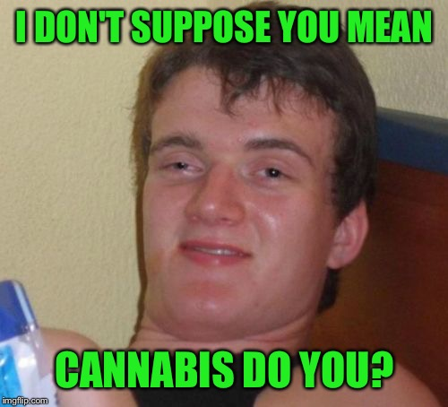 10 Guy Meme | I DON'T SUPPOSE YOU MEAN CANNABIS DO YOU? | image tagged in memes,10 guy | made w/ Imgflip meme maker