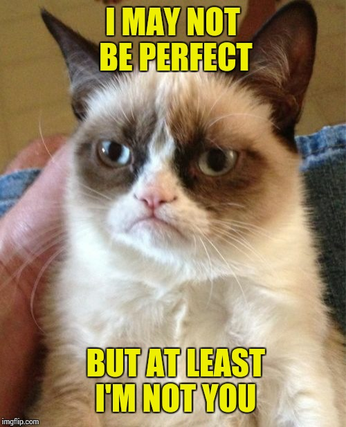 Grumpy Cat Meme | I MAY NOT BE PERFECT BUT AT LEAST I'M NOT YOU | image tagged in memes,grumpy cat,sir_unknown | made w/ Imgflip meme maker