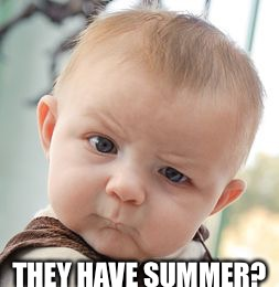 Skeptical Baby Meme | THEY HAVE SUMMER? | image tagged in memes,skeptical baby | made w/ Imgflip meme maker