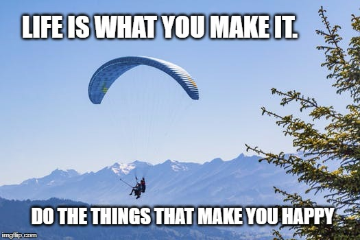 Life in the making | LIFE IS WHAT YOU MAKE IT. DO THE THINGS THAT MAKE YOU HAPPY | image tagged in life,happy,inspirational quote,inspirational,nature,parachute | made w/ Imgflip meme maker