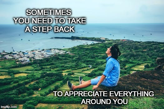 Take a breath | SOMETIMES YOU NEED TO TAKE A STEP BACK TO APPRECIATE EVERYTHING AROUND YOU | image tagged in relax,appreciation,inspirational quote,inspirational,nature,life | made w/ Imgflip meme maker
