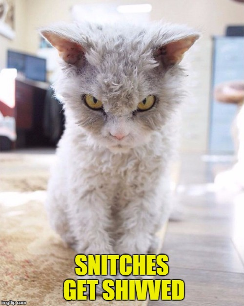 SNITCHES GET SHIVVED | made w/ Imgflip meme maker