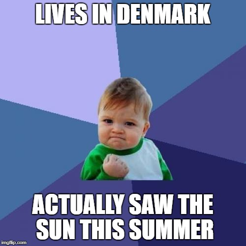 Success Kid Meme | LIVES IN DENMARK ACTUALLY SAW THE SUN THIS SUMMER | image tagged in memes,success kid | made w/ Imgflip meme maker