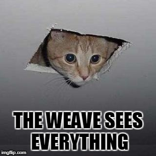 Ceiling Cat Meme | THE WEAVE SEES EVERYTHING | image tagged in memes,ceiling cat | made w/ Imgflip meme maker