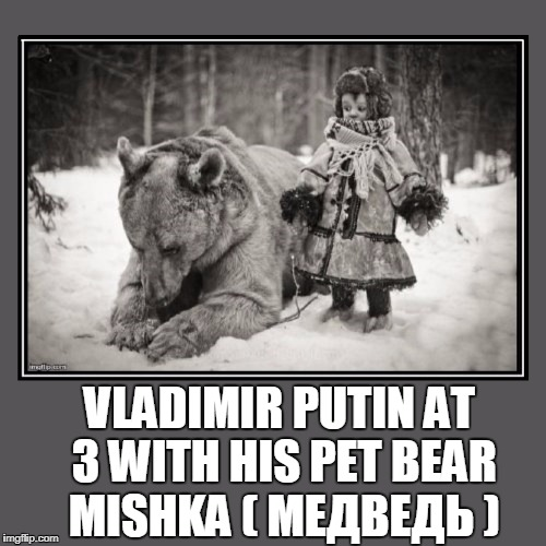 vladimir putin - Imgflip Vladimir Putin Funny Bear