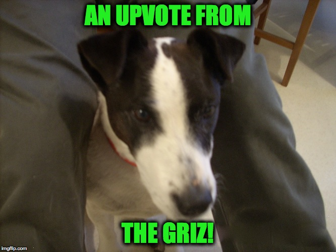 AN UPVOTE FROM THE GRIZ! | made w/ Imgflip meme maker