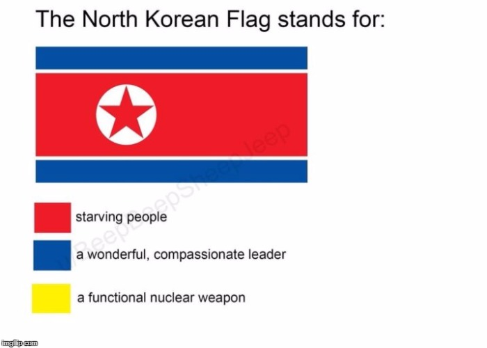 True Dat | image tagged in north korea,funny,flag,flag week,memes | made w/ Imgflip meme maker