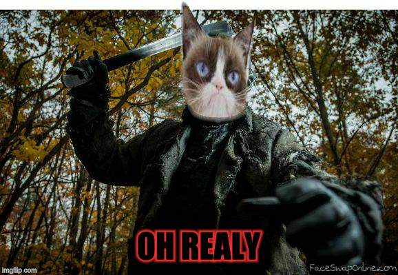 grumpy cat jason | OH REALY | image tagged in grumpy cat jason | made w/ Imgflip meme maker
