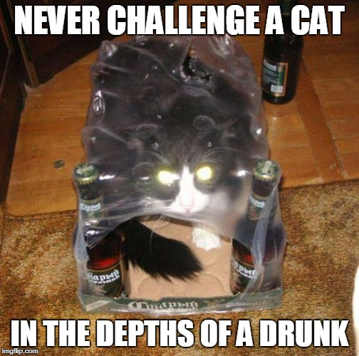 NEVER CHALLENGE A CAT IN THE DEPTHS OF A DRUNK | made w/ Imgflip meme maker