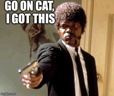Say That Again I Dare You Meme | GO ON CAT, I GOT THIS | image tagged in memes,say that again i dare you | made w/ Imgflip meme maker