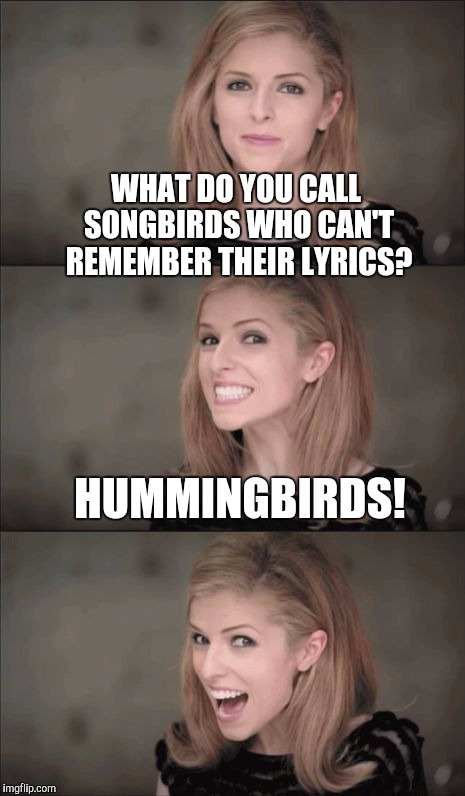So that's why they're called hummingbirds... |  WHAT DO YOU CALL SONGBIRDS WHO CAN'T REMEMBER THEIR LYRICS? HUMMINGBIRDS! | image tagged in memes,bad pun anna kendrick,jbmemegeek,puns,birds,hummingbird | made w/ Imgflip meme maker