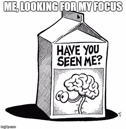 brain missing | ME, LOOKING FOR MY FOCUS | image tagged in brain missing | made w/ Imgflip meme maker