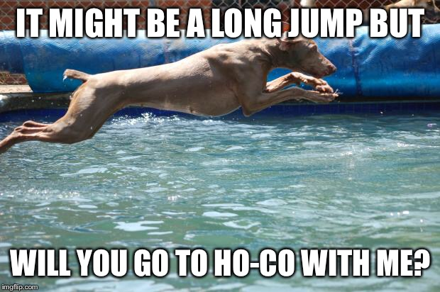 Long Jump | IT MIGHT BE A LONG JUMP BUT WILL YOU GO TO HO-CO WITH ME? | image tagged in long jump | made w/ Imgflip meme maker