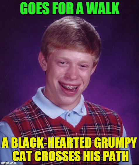 Bad Luck Brian Meme | GOES FOR A WALK A BLACK-HEARTED GRUMPY CAT CROSSES HIS PATH | image tagged in memes,bad luck brian | made w/ Imgflip meme maker