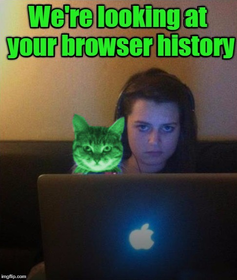 WE'RE LOOKING AT YOUR BROWSER HISTORY | image tagged in memes,raycat,browser history | made w/ Imgflip meme maker
