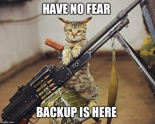HAVE NO FEAR BACKUP IS HERE | made w/ Imgflip meme maker