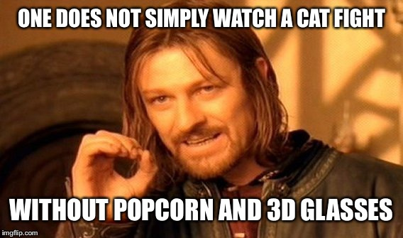 One Does Not Simply Meme | ONE DOES NOT SIMPLY WATCH A CAT FIGHT WITHOUT POPCORN AND 3D GLASSES | image tagged in memes,one does not simply | made w/ Imgflip meme maker