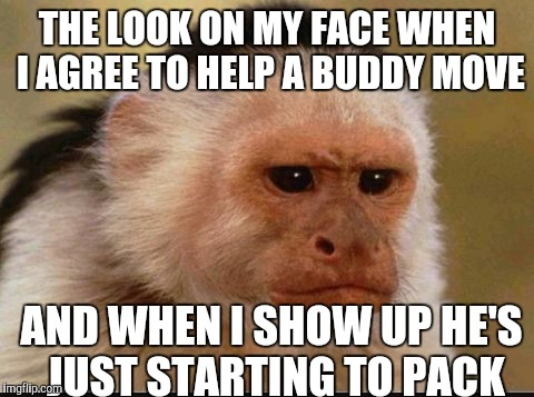 The Moving Day Murders |  THE LOOK ON MY FACE WHEN I AGREE TO HELP A BUDDY MOVE; AND WHEN I SHOW UP HE'S JUST STARTING TO PACK | image tagged in monkey,funny memes | made w/ Imgflip meme maker
