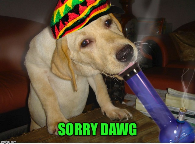 SORRY DAWG | made w/ Imgflip meme maker