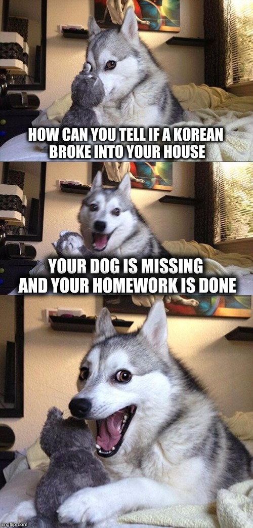 Bad Pun Dog Meme | HOW CAN YOU TELL IF A KOREAN BROKE INTO YOUR HOUSE YOUR DOG IS MISSING AND YOUR HOMEWORK IS DONE | image tagged in memes,bad pun dog | made w/ Imgflip meme maker