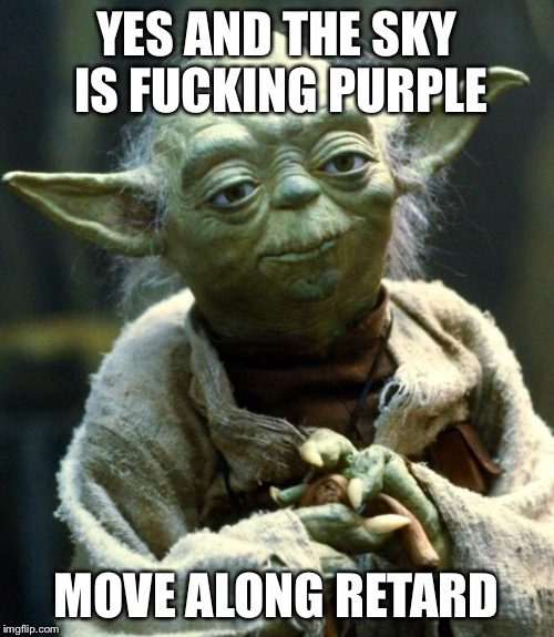 Star Wars Yoda Meme | YES AND THE SKY IS F**KING PURPLE MOVE ALONG RETARD | image tagged in memes,star wars yoda | made w/ Imgflip meme maker