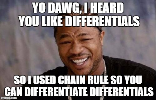 Yo Dawg Heard You Meme | YO DAWG, I HEARD YOU LIKE DIFFERENTIALS SO I USED CHAIN RULE SO YOU CAN DIFFERENTIATE DIFFERENTIALS | image tagged in memes,yo dawg heard you,calculus,math nerd | made w/ Imgflip meme maker