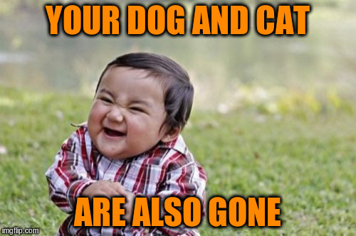 Evil Toddler Meme | YOUR DOG AND CAT ARE ALSO GONE | image tagged in memes,evil toddler | made w/ Imgflip meme maker