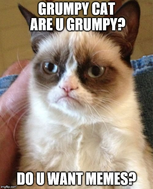 Grumpy Cat Meme | GRUMPY CAT ARE U GRUMPY? DO U WANT MEMES? | image tagged in memes,grumpy cat | made w/ Imgflip meme maker
