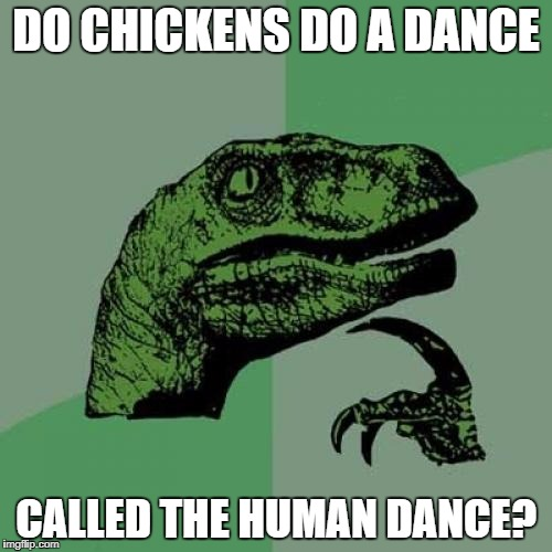 Just imagine actual chickens doing the chicken dance | DO CHICKENS DO A DANCE CALLED THE HUMAN DANCE? | image tagged in memes,philosoraptor,funny,bad puns,dank memes,chicken dance | made w/ Imgflip meme maker