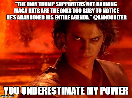 "You Underestimate My Power Meme | ""THE ONLY TRUMP SUPPORTERS NOT BURNING MAGA HATS ARE THE ONES TOO BUSY TO NOTICE HE'S ABANDONED HIS ENTIRE AGENDA."" @ANNCOULTER YOU UNDEREST 