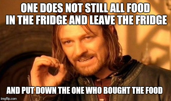One Does Not Simply Meme | ONE DOES NOT STILL ALL FOOD IN THE FRIDGE AND LEAVE THE FRIDGE AND PUT DOWN THE ONE WHO BOUGHT THE FOOD | image tagged in memes,one does not simply | made w/ Imgflip meme maker