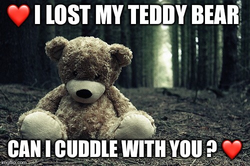 Lost Teddy Bear  |  ❤️ I LOST MY TEDDY BEAR; CAN I CUDDLE WITH YOU ? ❤️ | image tagged in missing you | made w/ Imgflip meme maker
