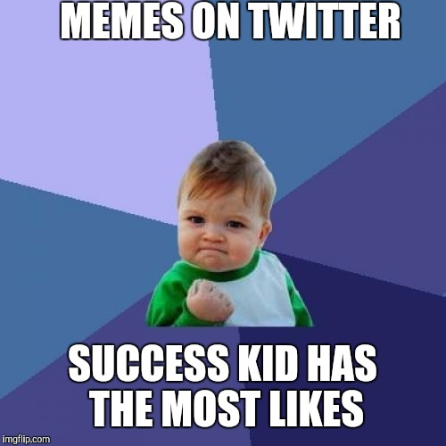 Success Kid Meme | MEMES ON TWITTER SUCCESS KID HAS THE MOST LIKES | image tagged in memes,success kid | made w/ Imgflip meme maker