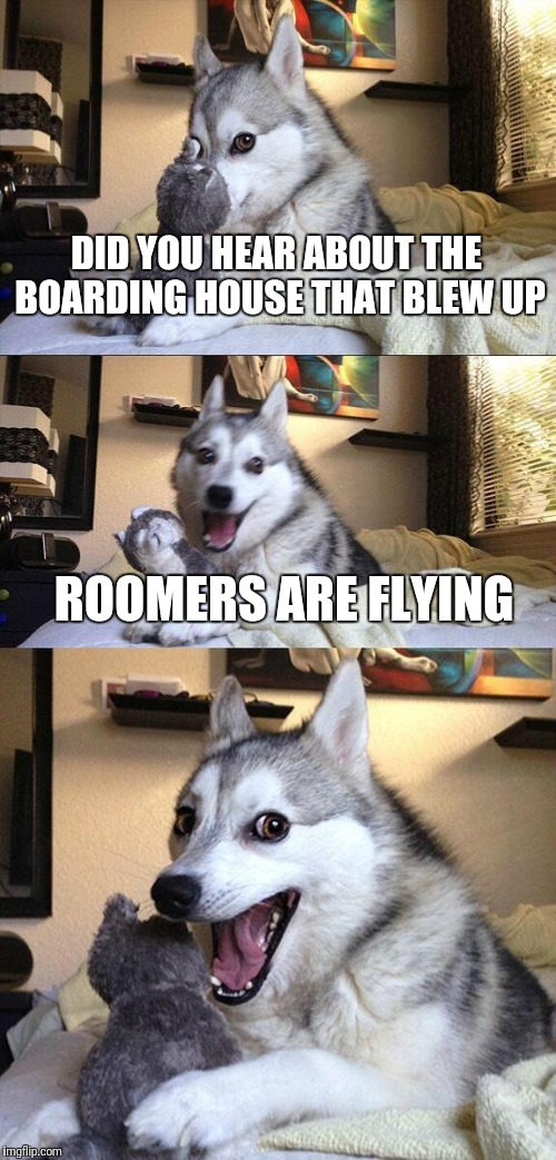 Bad Pun Dog Meme | DID YOU HEAR ABOUT THE BOARDING HOUSE THAT BLEW UP ROOMERS ARE FLYING | image tagged in memes,bad pun dog | made w/ Imgflip meme maker