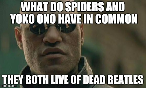 Matrix Morpheus Meme | WHAT DO SPIDERS AND YOKO ONO HAVE IN COMMON THEY BOTH LIVE OF DEAD BEATLES | image tagged in memes,matrix morpheus | made w/ Imgflip meme maker