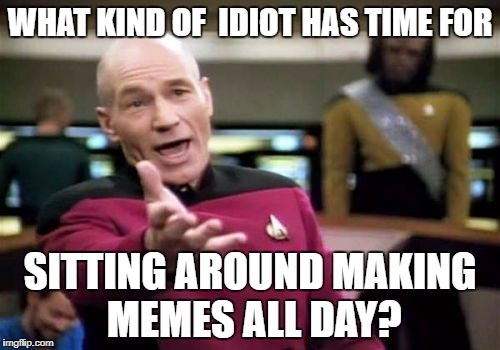 Picard Wtf Meme | WHAT KIND OF  IDIOT HAS TIME FOR SITTING AROUND MAKING MEMES ALL DAY? | image tagged in memes,picard wtf | made w/ Imgflip meme maker